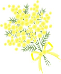 春の花・ミモザ・イラスト Watercolor Plants, Watercolor Paintings, Mimosa Plant, Nature Journal, Plant Illustration, Little Flowers, African Animals, Botanical Art, Pattern Art
