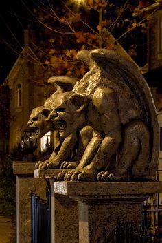 Gargoyles by twhaunt, Gothic Gargoyles, Pedestal, Ange Demon, Grades, Gothic Architecture, Mythical Creatures, Faeries, Sculpture Art, Creepy