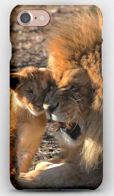 iPhone 7 Case Lion, Cub, Care, Predators