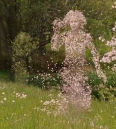 Image result for ent narnia dryad