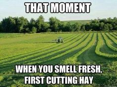 Love the smell❤️