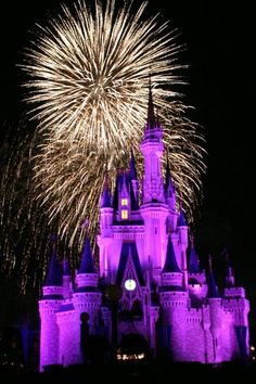 Disney - Orlando places-i-ve-been