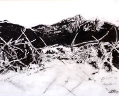"#20160309 charcoal on Osnaberg cloth 32"" x 40' by John Warren Oakes"