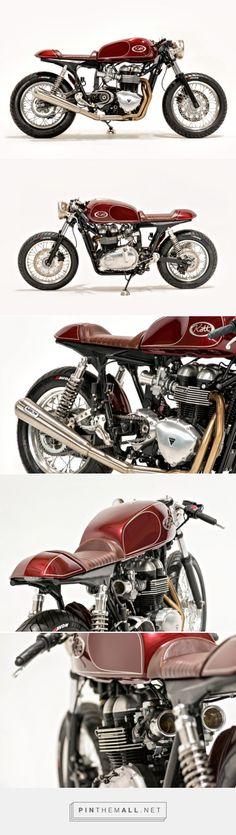 Live Fast: Kott Motorcycles' racy Thruxton | Bike EXIF - created via http://pinthemall.net