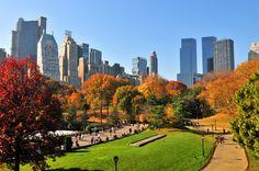 Perderse o encontrarse en el Central Park - http://www.absolutnuevayork.com/4430-2/