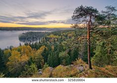 Stock Photo: Foggy morning in the Aulanko nature reserve park in Finland. The sun is about to rise in the early morning. HDR image.