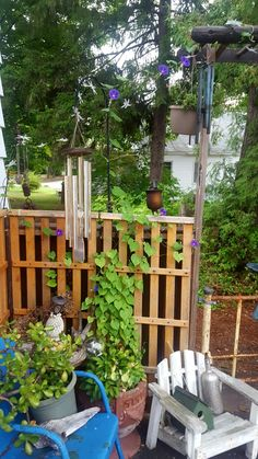 Old futon used as a trellis for my morning glories!