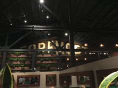 Review of Foremost Wine Company in San Luis Obispo, new restaurant of Rob & Nancy Murray (my son) --Donnetta