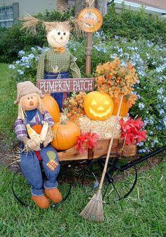 Pumpkin Patch fall idea