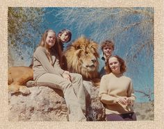 family portrait with lion - tippi hedron & family (including daughter melanie griffith) from a flickr dedicated to 'roar: the movie' (which came out in 1981, though i suspect this photo was taken a little earlier than that)