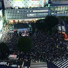 三宅洋平の選挙フェスが社会現象に!渋谷ハチ公前が凄いことになってた!