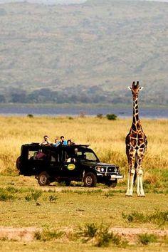 Paraa Safari Lodge, Uganda - safari drive