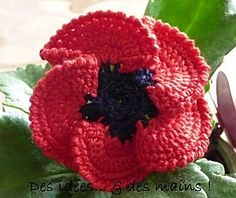 Crochet Flower Fleur : Coquelicot au crochet - poppy from a French site - I wonder how good babblefish would be for translating a pattern? Poppy Crochet, Crochet Poppy Pattern, Crochet Flower Patterns, Crochet Motif, Irish Crochet, Crochet Hooks, Hat Crochet, Free Crochet, Crochet Patron