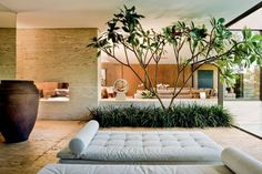 Jardim interno (Foto: divulgação)