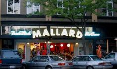 Mallard Ice Cream & Café at 1323 Railroad Avenue in Bellingham, WA.  Lots of flavors to choose from.