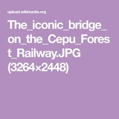 The_iconic_bridge_on_the_Cepu_Forest_Railway.JPG (3264×2448)