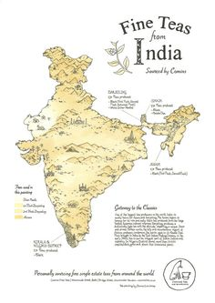 tea map of india, poster by donna enticknap - painted with teas from india