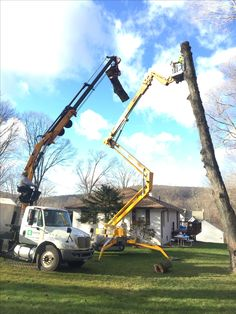 Asplundh A Tree Service Company From Florida Stops To