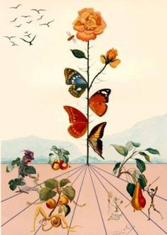 Dali Flower, 1969 Salvador Dali, possibly part of the Alice in Wonderland collection? #half_butterfly_tattoo