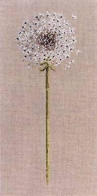 Dandelion - pattern