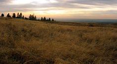 Walla Walla sunset