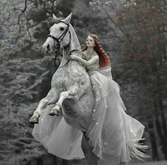 New photography fantasy fairy tales cinderella ideas Fantasy Photography, Horse Photography, Photography Ideas, Photography Composition, Photography Magazine, Beauty Photography, Digital Photography, Illustration Fantasy, Images Esthétiques