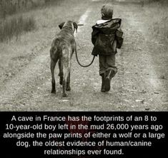 A cave in France has the footprints of an eight to ten-year-old boy left in the mud years ago alongside the paw prints of either a wolf or a large dog, the oldest evidence of human/canine. Psychological Facts About Boys, 10 Year Old Boy, Wtf Fun Facts, Epic Facts, Dog Facts, Crazy Facts, Random Facts, Unbelievable Facts, Amazing Facts