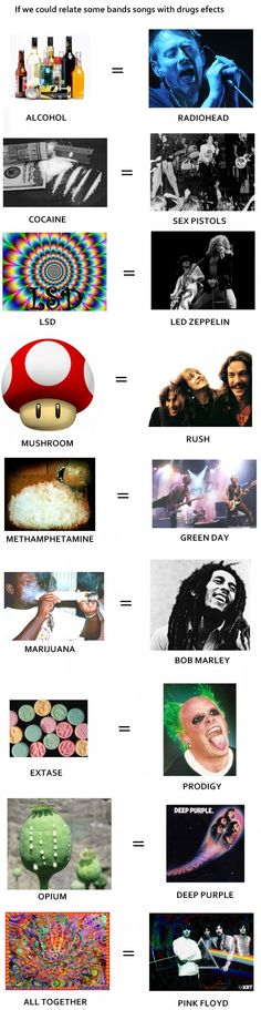 You don't need drugs to enjoy pink floyd.you need pink floyd to enjoy drugs. Music Humor, Music Memes, Music Logo, Music Lyrics, Pink Floyd Lyrics, Animal Facts For Kids, Guitar Wall Art, Music Drawings, Roger Waters