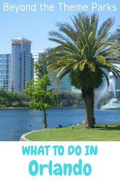 There's more than just theme parks in Orlando. Find out what there is to do in Orlando!