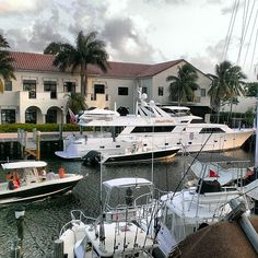 Lauderdale Life #FortLauderdale #sunsentinel #instayacht #instaflorida #igersftl #igerssoflo #teamstartliving #urbangangfamily
