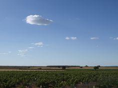 paisaje de la Manchuela