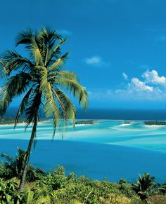 Bora Bora Lagoon >> I can't imagine how awesome it would be to swim and snorkel there! #PinUpLive