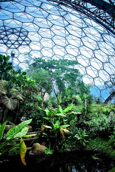 Geodesic Dome Homes - The Sustainable Dome House of the Future - Biodome Glass Geodesic dome homes Luxury passive geodesic dome house Futuristic Dome House Green Architecture, Futuristic Architecture, Mini Mundo, Solar, St Just, Eden Project, Dome House, Geodesic Dome, Earthship