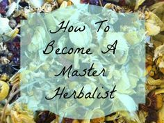 Want to become a professional herbalist? Learn how to become a certified master herbalist.