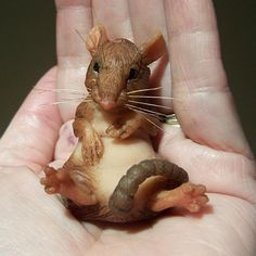 Polymer Clay People | Polymer Clay Mouse By Thomas Toadsworth | Flickr - Photo Sharing!