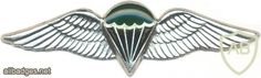 SOUTH AFRICA Parachutist qualification wings, Static line, Advanced, Combat/night, unofficial