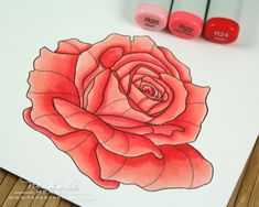 http://nicholeheady.typepad.com/.a/6a00d8341c64e753ef0133f0eb4317970b-pi  YOF: Roses and copics