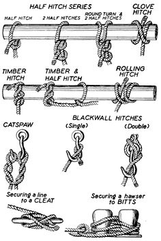 diffrent types of knots | Different types of knots image search results