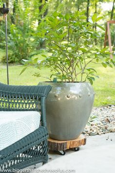 Do you need to be able to move your heavy pots around your patio? Make this DIY Rolling Plant Stand out of a tree stump!