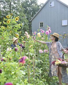 local-creative-frances-palmer-james-daughter-flowers-garden-summer-flowers-fall-foraging-12