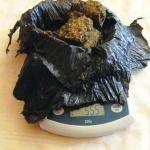 Brasil estudiará aprobar el uso medicinal de la marihuana