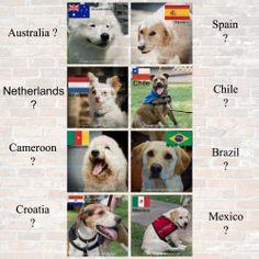 What a game yesterday! Go USA! Here are today's World Cup games! #Worldcup2014 #FIFA #AustraliavsSpain #NetherlandsvsChile #CameroonvsBrazil #CroatiavsMexico #AUS #ESP #NLD #CHL #CMR #BRA #HRV #MEX