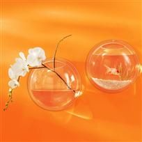 Mod pod wall vase - cool bathroom addition with fish or flowers!