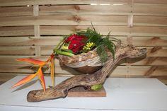 Calabash and driftwood