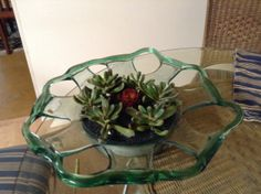 Take a large unusual bowl and add some succulents to create a one-of-a-kind centerpiece!