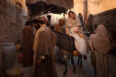 NATUUR mijn PASSIE - NATURE and POETRY: Jozef en Maria in Betlehem.