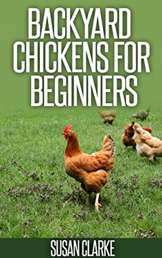 Free Kindle book for a limited time (download to your Kindle or Kindle for PC now before the price increases): Backyard Chickens For Beginners: A Comprehensive Guide to Raising Chickens in Urban Environments.
