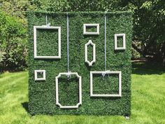 18-ivy-wall-backdrop-with-hanging-frames