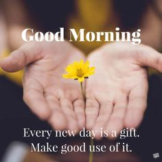 Good Morning. Every new day is a gift. Make good use of it.