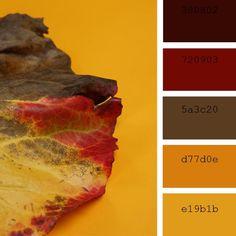 10 paletas de colores para inspirarte este otoño | Chalk Paint Shades